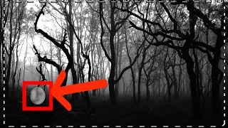 HAUNTED FOREST waar mensen zijn VERMOORD! #VAELTAX