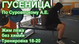 ГУСЕНИЦА по Суровецкому А.Е. Видео: 8