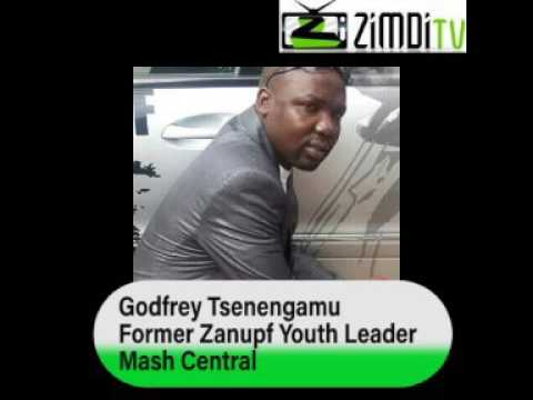 Godfrey Tsenengamu Tells the World how Mugabe takes Zanupf members to Bed.
