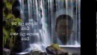 Mata Mulu Lowama Obayi Valentine day(lyrics)