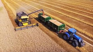 Mähdrescher New Holland CR9070 - Trecker T7.270 - Direktbeladung - Weizenernte wheat harvest