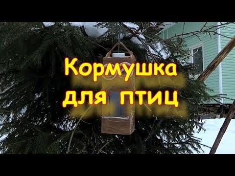 Как сделать кормушку для птиц из молочного пакета