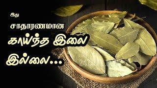 Biryani leaves Health Benefits - Tamil Health Tips