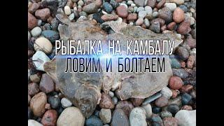 Камбала Ловля на донки Рыбалка в Балтийском море