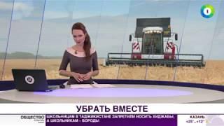 Финишная прямая: аграрии Беларуси планируют собрать 10 млн тонн зерна - МИР24