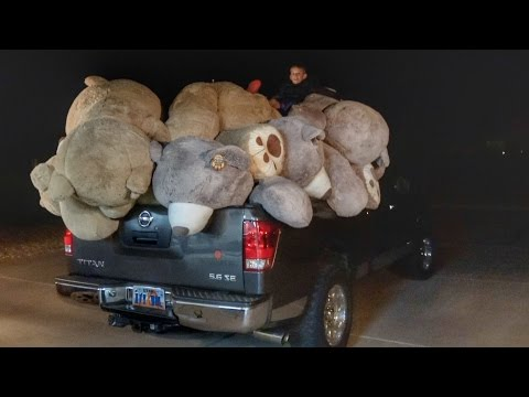 Filled our house with World's Largest Teddy Bears!