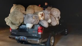Filled our house with World's Largest Teddy B...