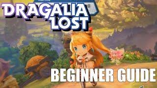 The ULTIMATE Beginner