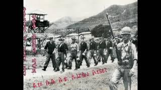 북한군 포로들 거제 수용소를 떠나 판문점으로
