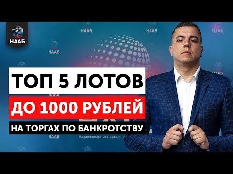 Топ 5 лотов до 1000 рублей на торгах по банкротству