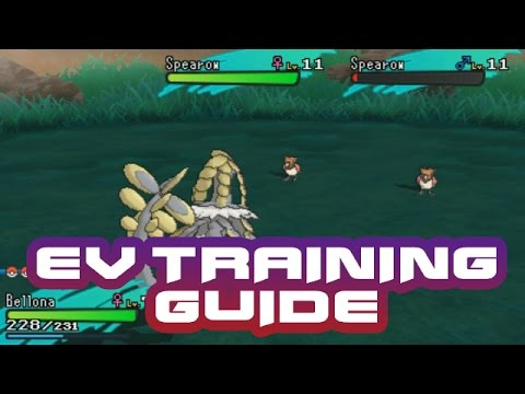 Pokemon Sun and Moon - How to EV Train