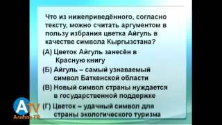 Словесно-логический тест. Общая информация. Чтение и понимание текста на русском языке