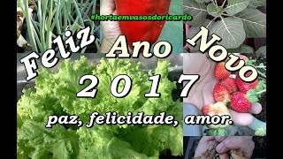 Feliz Ano Novo 2017 mensagem aos amigos da horta. Happy New Year 2017