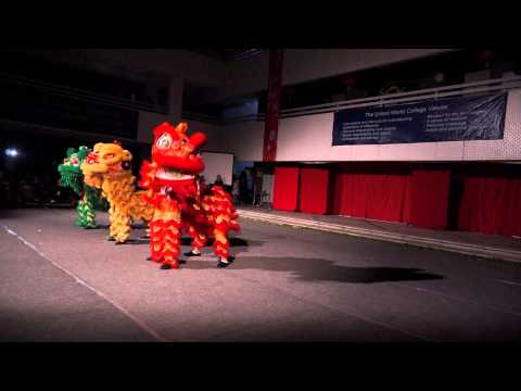 CCE 2015 dragon and lion dance