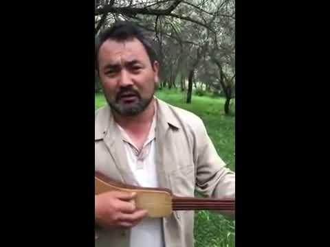 Украина мой талант анна ченцова видео скачать filescap.