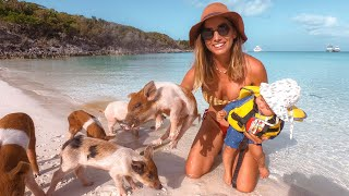 Swimming with PIGS in the EXUMAS! I'm Melting 😻 Ep.218