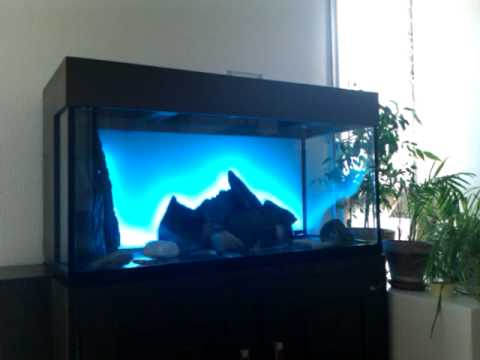 r tro clairage aquarium avec ruban led youtube. Black Bedroom Furniture Sets. Home Design Ideas
