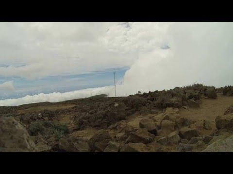 Phonography  : Singing Antenna - Reunion Island (-21.115944, 55.422302)