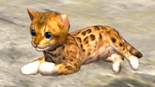 Симулятор КОШЕК 4 Маленький рыжий котик против Собак в Ultimate Cat Simulator с Кидом на пурумчата