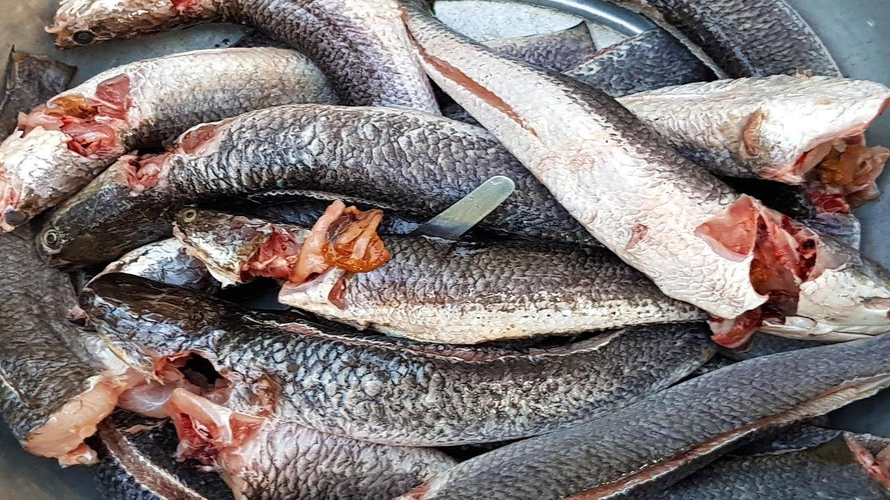 how to cook razor fish