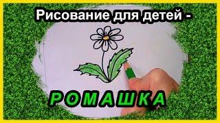 Рисунки цветов для детей:  как нарисовать РОМАШКУ(Как нарисовать РОМАШКУ просто и быстро! Учимся рисовать цветы без лишних усилий - Рисунок для детей - РОМАШК..., 2016-10-25T13:36:35.000Z)