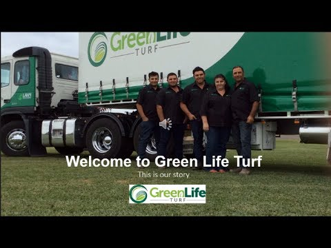 Green Life Turf - Where We've Come From; Where We're Going