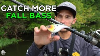 Fishing The Fall Transition For Bass | Top Baits To Fish NOW