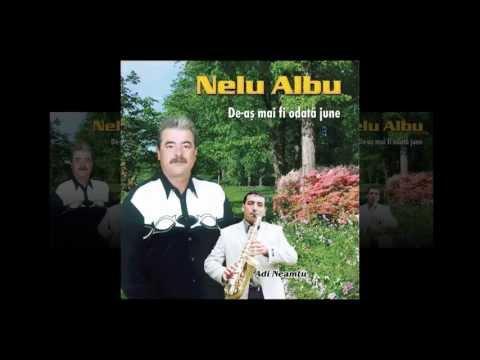Nelu Albu- N-am crezut ca-n lumea asta