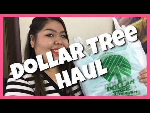 Dollar Tree Haul | Fearless Fatgirl