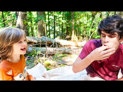 Family Picnic in the Woods