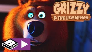 Grizzly i lemingi | Hipnoza | Boomerang Video