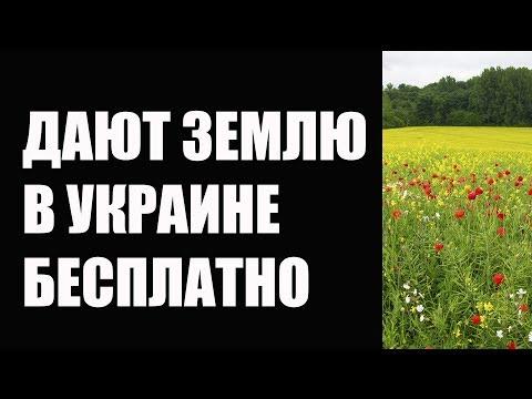 Как получить землю бесплатно в Украине – Кабмин