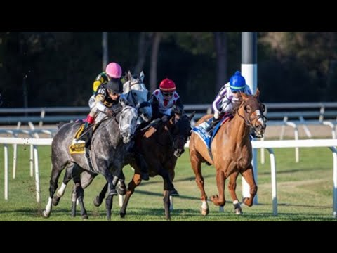 2020 Tampa Bay Stakes