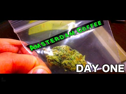 Marijuana In Coffee Shops? | THE AMSTERDAM VLOG #1