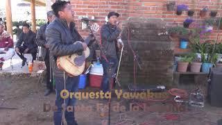 Download Lagu BODA   JAIME & MA. GUADALUPE   TATA LAZARO MICH. mp3