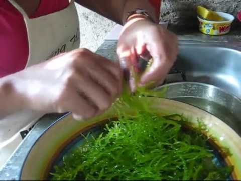Seaweed Salad Cooking With Marife A BlindOwl Outdoors Expat Philippines Foreigner Lifestyles Video