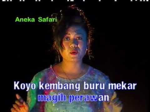 Niken Arisandi   Tangise Rondo Kembang
