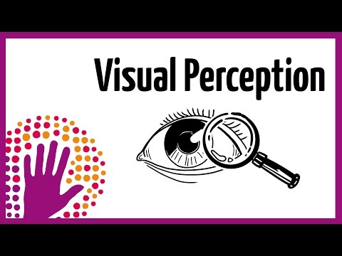Visual Perception – How It Works