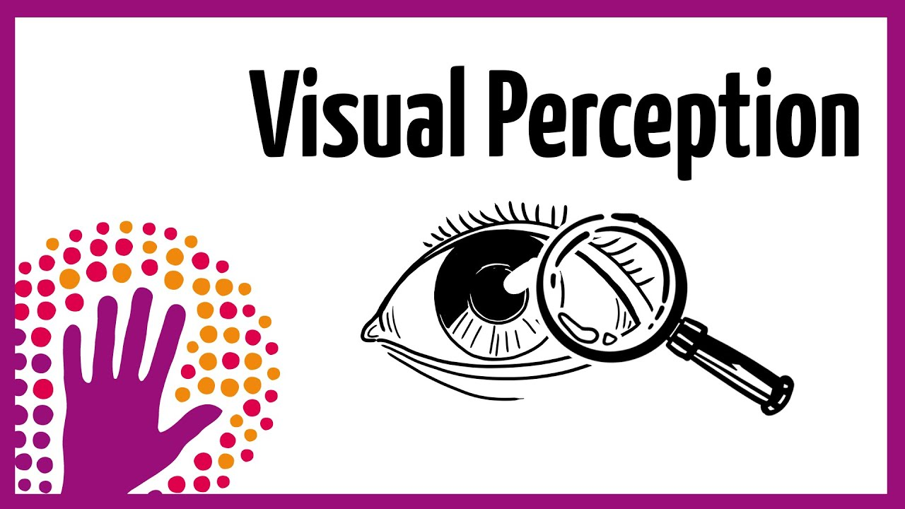 Visual perception how it works