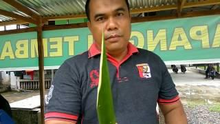 lelaki ini ingin menguji ilmu kebal bambunya tapi apa yang terjadi
