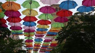 YSF (SRL) - Umbrella Sky screenshot 4