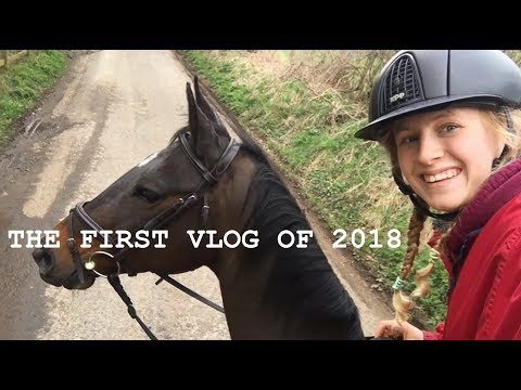VLOG/ WE GOT CHASED BY SHEEP?