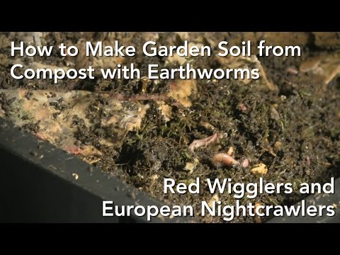 Making Garden Soil With Worm Composting - Jamie Griffin