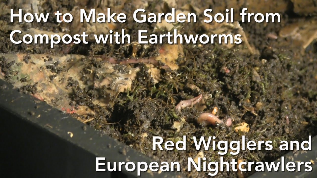 Making Garden Soil With Worm Composting Jamie Griffin YouTube