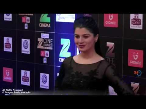 Kainaat Arora Showing Assets at The Red Carpet of Zee Cine Award