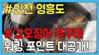 쭈꾸미 갑오징어 낚시 포인트 수도권 워킹 포인트 공개!!TV 바이트