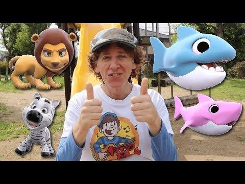 Matt hát tại công viên  Cá mập bé, bạn thấy gì?  Tìm hiểu màu sắc, động vật hoang dã
