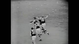 1965 VFL  Grand Final Essendon V St Kilda