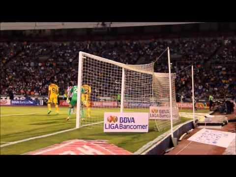 Color Monterrey vs América - Clausura 2014