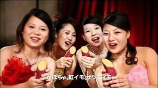 学P沖縄リーグ沖縄 2011年  キリスト教学院大学.mp4